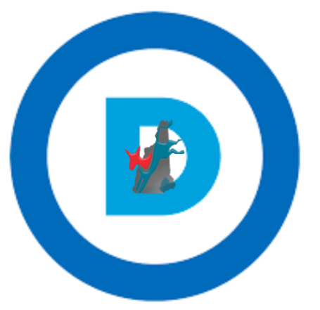 Raymond Democratic Committee (NH)