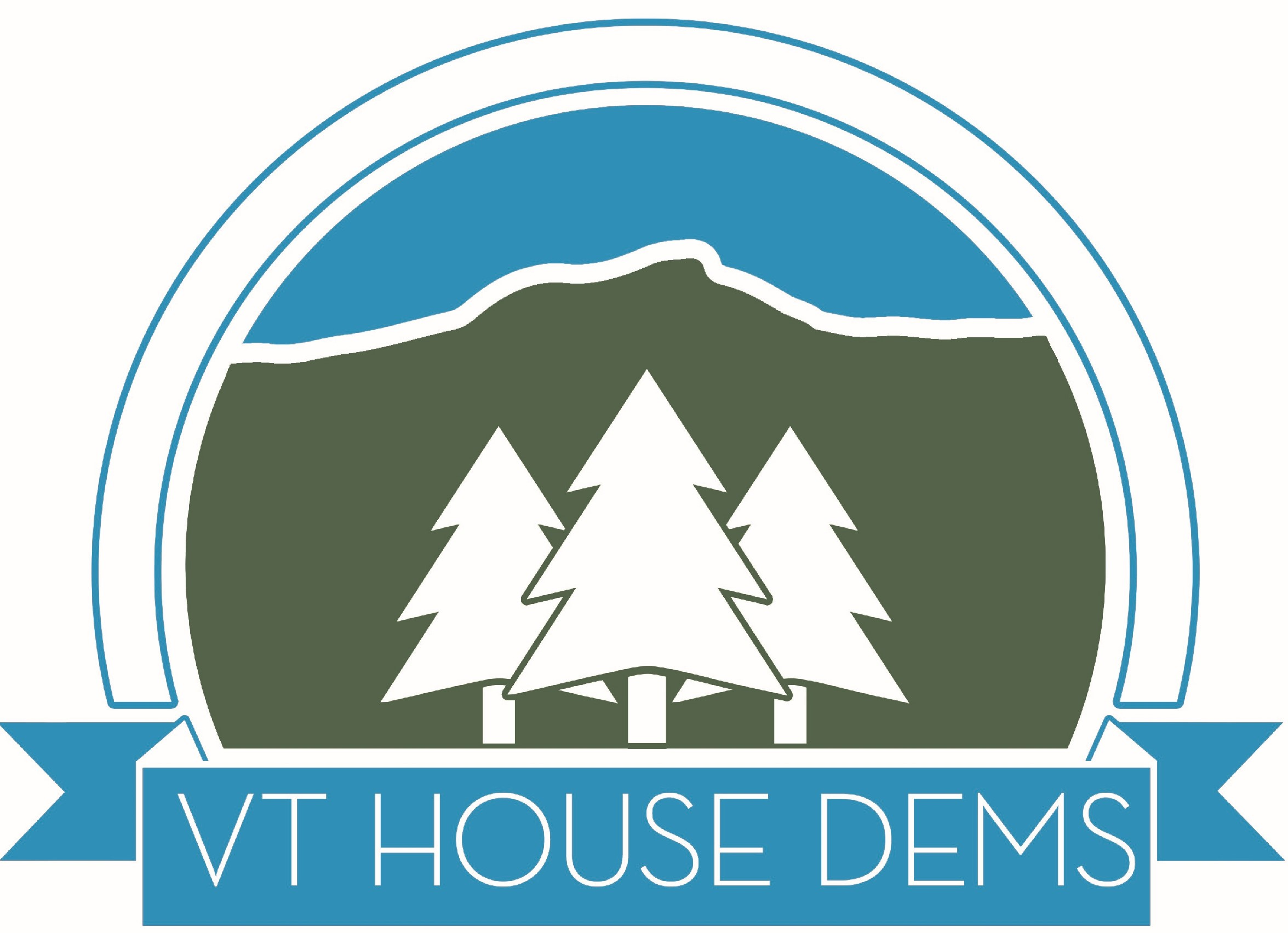 Vermont Democratic Party House Campaign Project