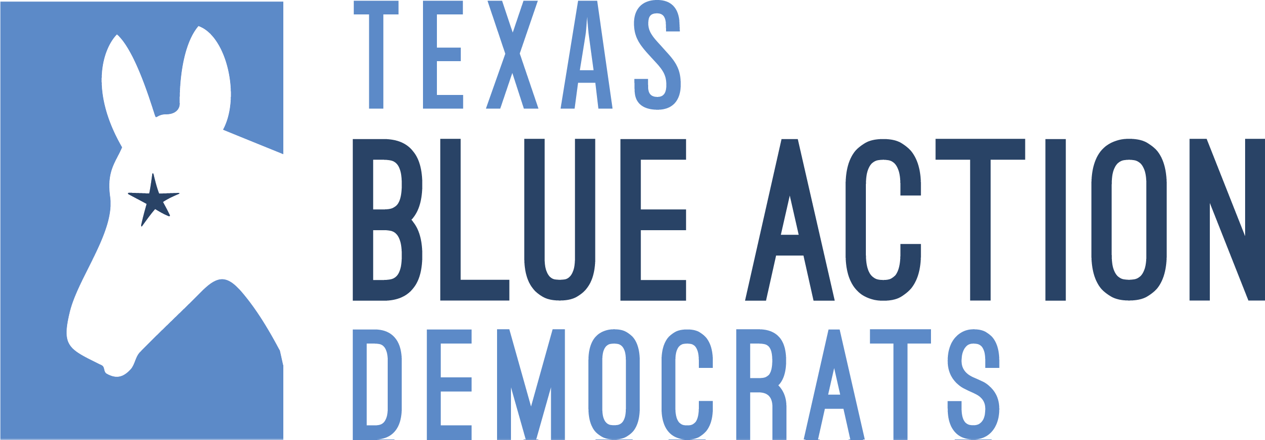 Blue Action Democrats - Southwest Austin (TX)