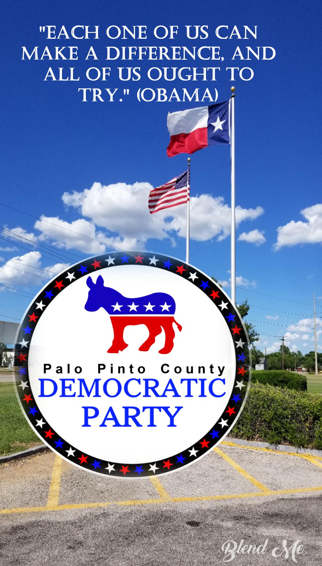 Palo Pinto County Democratic Party (TX)