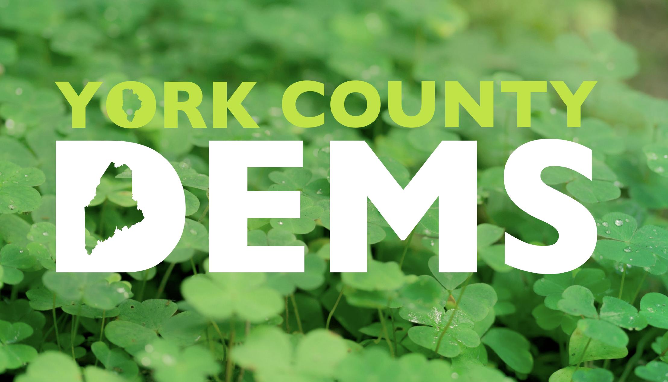 York County Democratic Committee (ME)