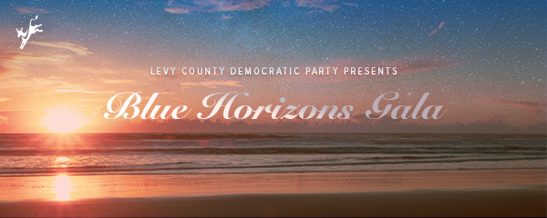 Levy County Democratic Party (FL)