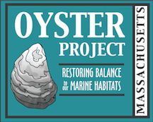 Mass Oyster Project